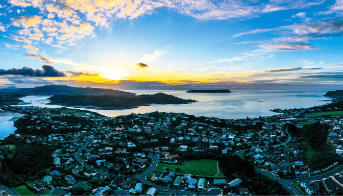 Hutt Valley and Porirua City Property Update - August 2019
